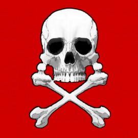 Albator-Captain Harlock.Skull.Rouge