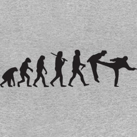 tee shirt gris chuck norris evolution pied dans la gueule