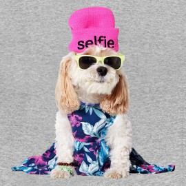 tee shirt american beagle outfitters heath grey