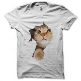 tee shirt cat lovely blanc