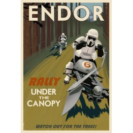 tee shirt endor rally gris