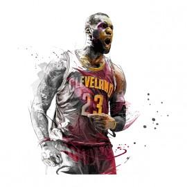 tee shirt cleveland 23 basketball