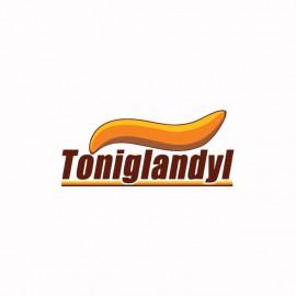 Tee shirt  Les Nuls Toniglandyl blanc