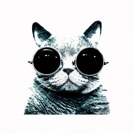 Tee shirt lenon cat glasses blanc