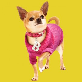 tee shirt chihuahua clothes yellow