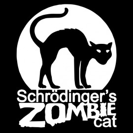 tee shirt schrodinger cat black