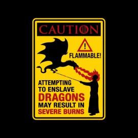 tee shirt slay dragon caution